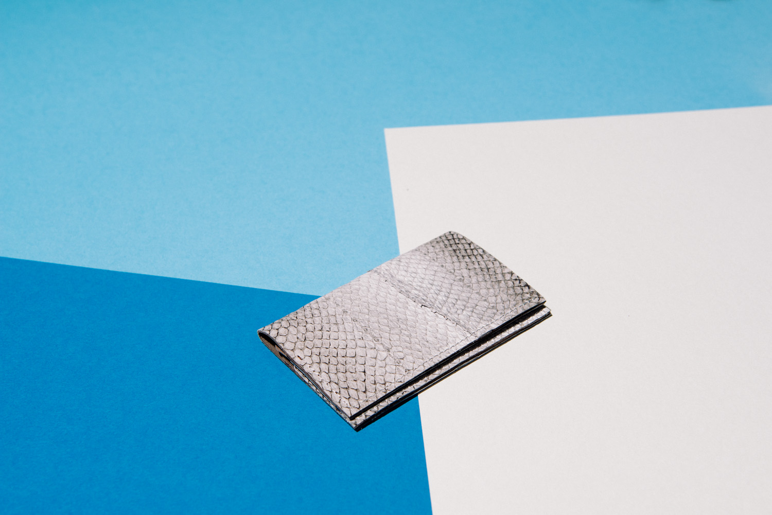 fish leather case